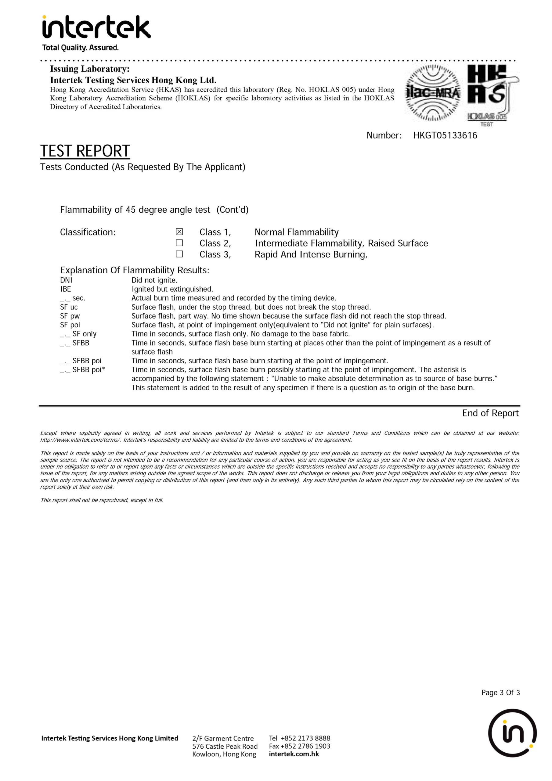 不燃燒報告 (3)